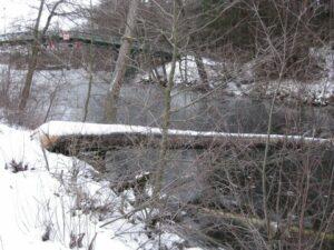 Bäverfälle vid kanalen i Flottsbro vid Tullingesjön - TSS Båtklubb