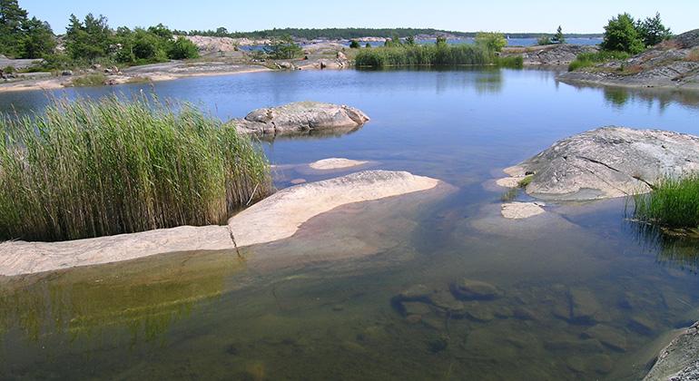 Stendörren, Springarholmen nära Piparholmen - Tullinge Segel Sällskap - båtklubb